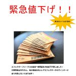 ~EFFECTOR 200点以上緊急値下げ!!~